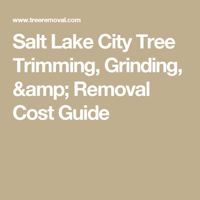 Salt Lake City Tree Trimming, Grinding, & Removal Cost Guide