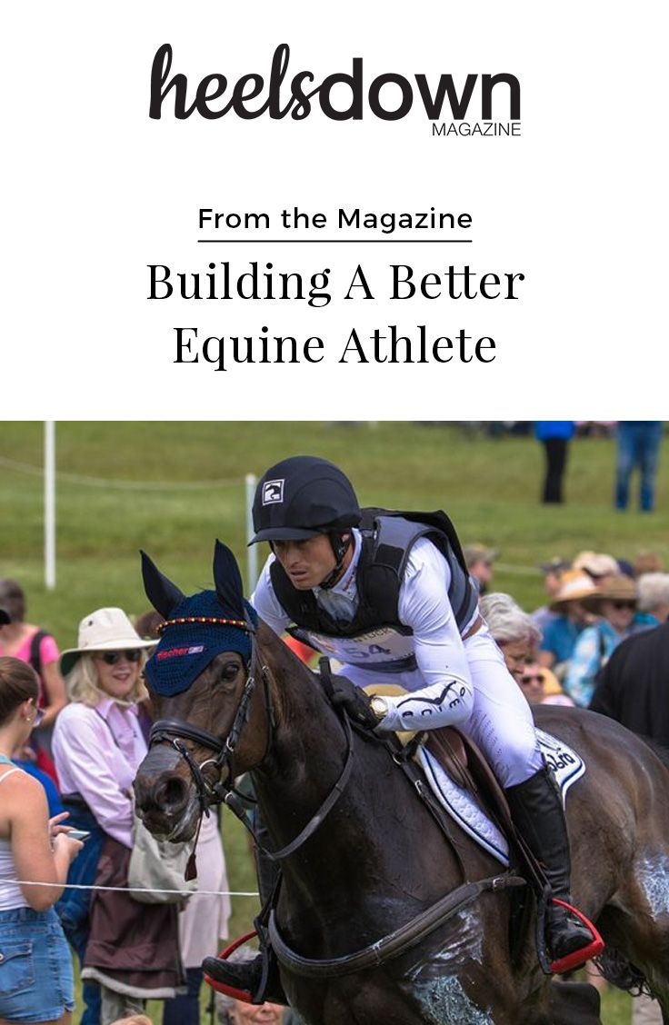 How decades of scientific research is transforming the performance horse Training for the Olympic Games requires a strict fitness and diet regime for an athlete competing in any sport. But for equestrians, it's doubled. [Read more...]