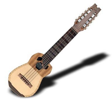 T.   A Charango is an instrument used in Andean music.
