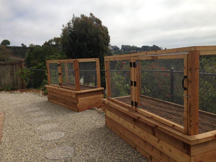 Critter Proof Planters Backyard Ideas Pinterest