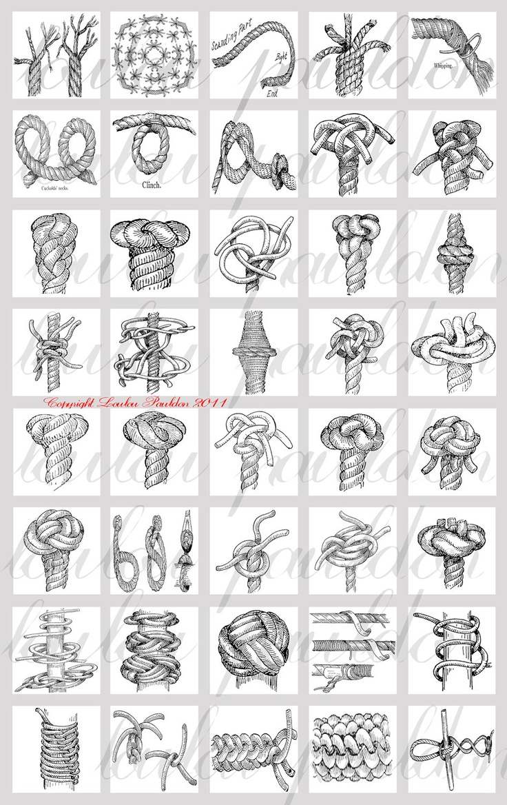 Black and White Knot Drawings
