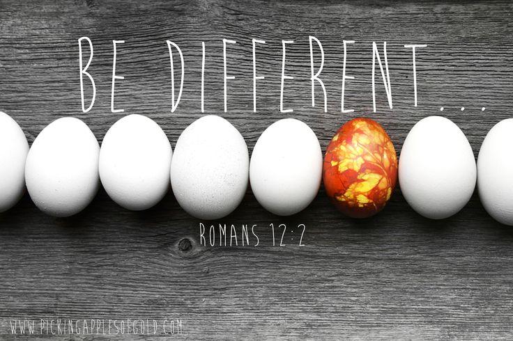 Romans 12:2 // See more on my blog: www.pickingapplesofgold.com