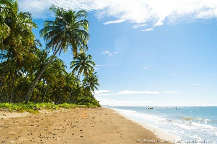 Praia do Patacho, em Porto de Pedras, Alagoas.  Saiba mais da Rota Ecológica >>> http://www.guiaviagensbrasil.com/blog/rota-ecologica-de-alagoas/
