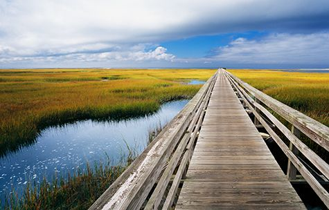Yarmouth, Cape Cod, Massachusetts- this was a boardwalk above a marsh... you could see the fish and crabs in the water clear as day. Beautiful.