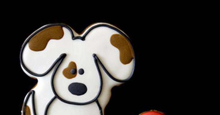 Qual é a taxa normal dos batimentos cardíacos de um filhote de cachorro? . A frequência cardíaca normal de um filhote de cachorro é mais rápida que a dos cães e seres humanos adultos. Se você colocar sua mão sobre o peito do seu cachorrinho e sentir como se o coração dele estivesse acelerado, isso não significa necessariamente que algo está errado com o coração do animal.