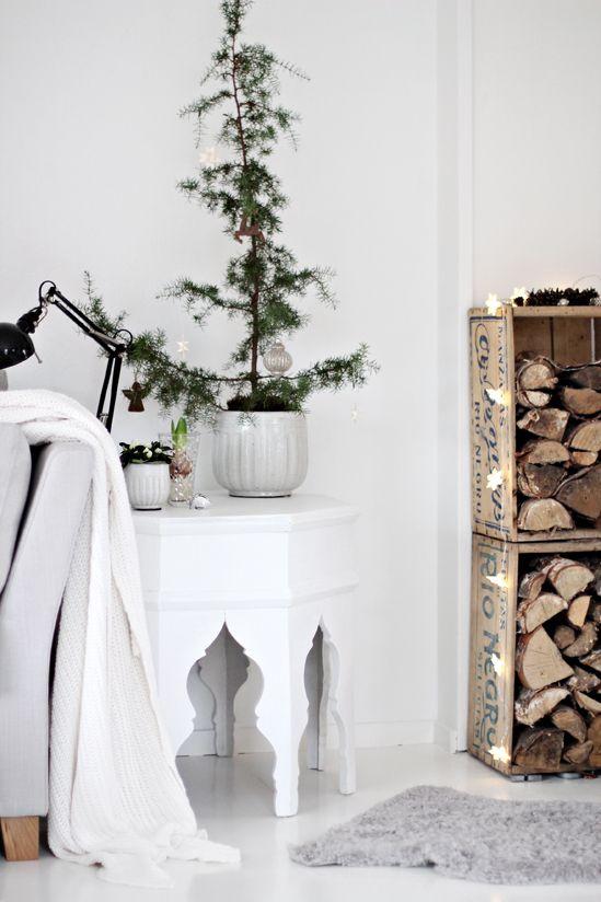 juniper christmas tree