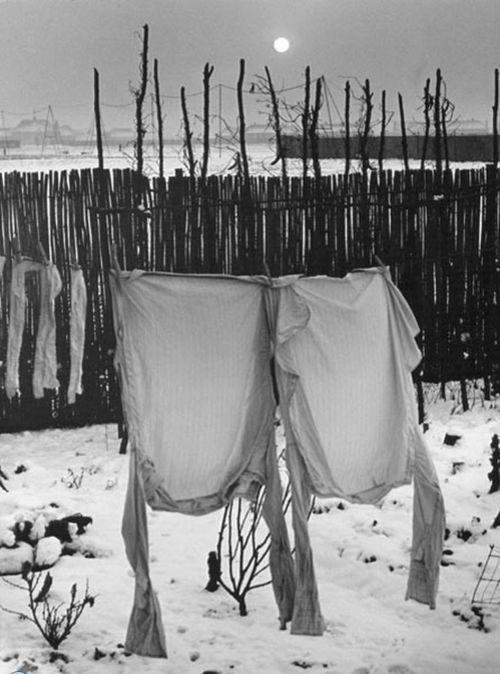 Frozen Shirts, Welwyn Garden City, 1941 byWolf Suschitzky~♛