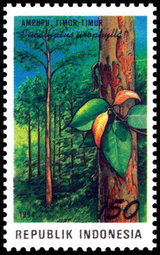 Indonesia Stamp - Indonesian  Timor Timur