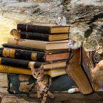 Buchtipps: Lesefutter für hungrige Lesetiger: Aktuelle Bücher für 8-12-Jährige, Kinderbücher für Schulkinder #buchtipp #kinderbuch #kinderbücher