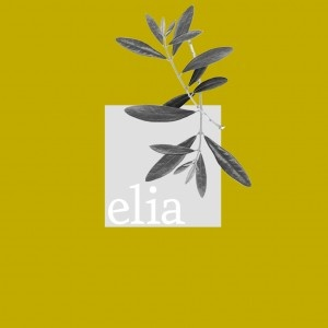 Elia Restaurant Dubai Step by Step Guide #Dubai #stepbystep