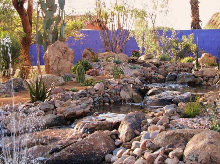 18 best Desert and Semi Arid Climate Gardens images on
