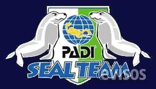 Curso de Buceo para niños de 8 a 10 años  SEAL TEAM PADIRequisitos:Tener de 8 a 10 años de edad.Saber nadarEl Curso incluye:5 clases ...  http://san-mateo-atenco.evisos.com.mx/curso-de-buceo-para-ninos-de-8-a-10-anos-id-624507