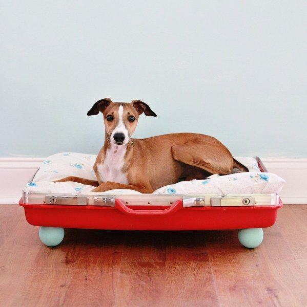 291 Best Pet Bed Ideas Images On Pinterest | Pet Beds, Bed Ideas