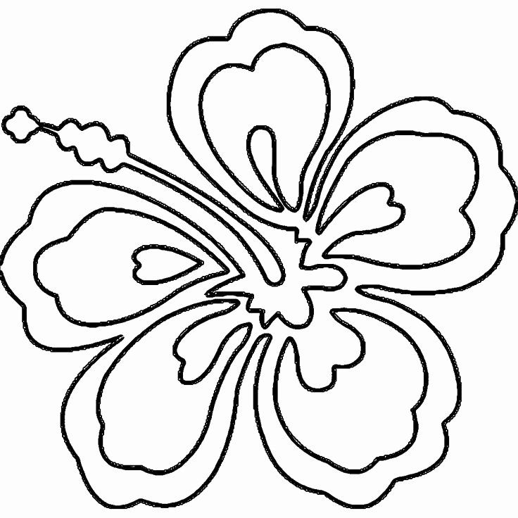 Hawaiian Flower Coloring Page Beautiful 70 Best Images About Summer Camp Hawaii On Pinterest Flower Coloring Pages Hawaiian Flower Drawing Emoji Coloring Pages