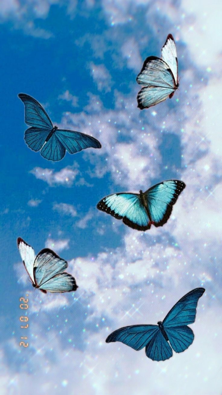 Aesthetic🦋☁ ⛓🔗🧷   Butterfly wallpaper iphone, Blue ...