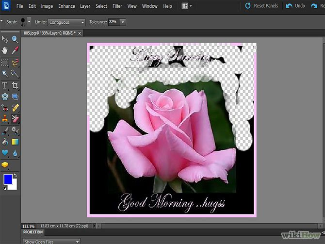 Remove Background With Photoshop Elements Step 6.jpg