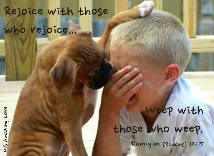 Rejoice with those who rejoice, and weep with those who weep. [Romans 12:15]