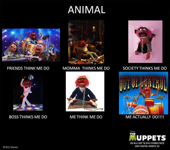 21 Best Muppet Love Images On Pinterest: Best 25+ Muppet Meme Ideas On Pinterest