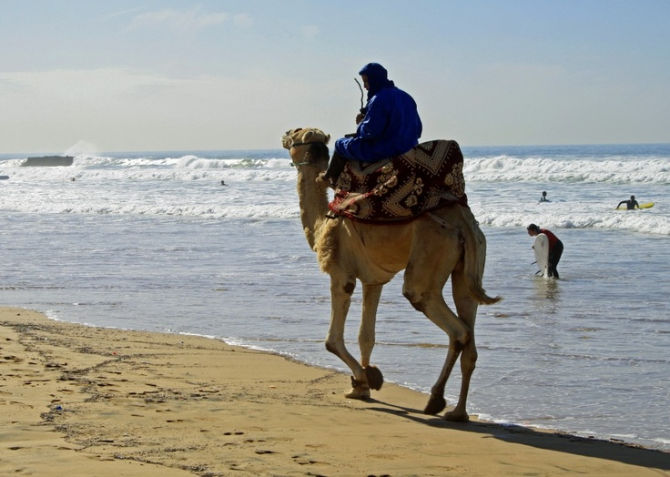 Surf Holidays in Morocco, Surf Taghazout
