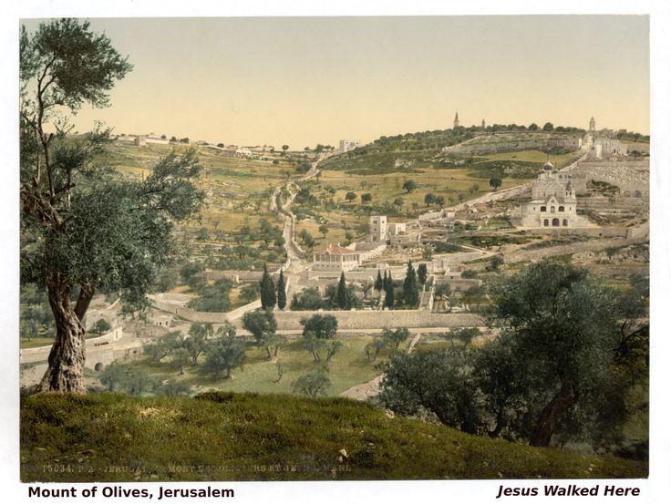 ae3d1d240d69cece0075c739c5a25dcd  mount of olives israel trip - Us Consulate Jerusalem Visa Application