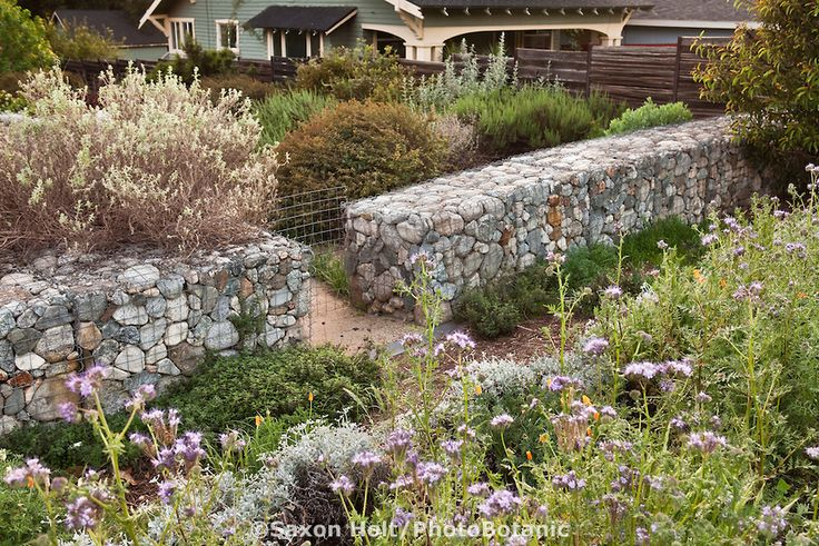 17 best images about back yard on pinterest gardens for Landscaping rocks yuma az