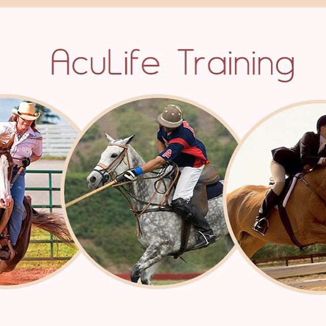 AcuLife®  Safe and natural pain relief for horses Reduces inflammation Convenient and easy to use Fast results Can be used for whole body or local pain