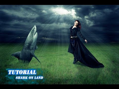 Photoshop tutorial shark on land - Manipulation