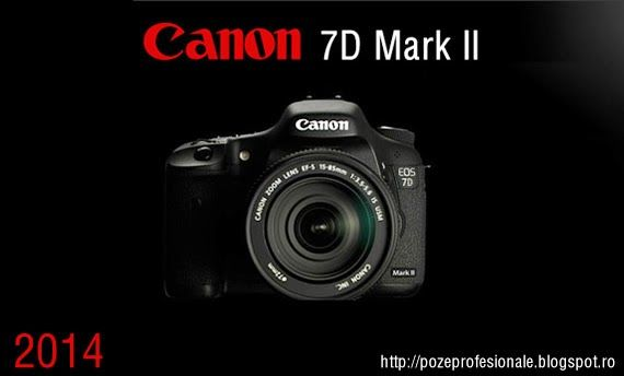 Fotografii Profesionale | Fotograf Profesionist | DSLR | Foto Nunti