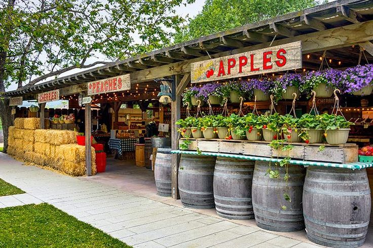 Avila Valley Barn- Avila Beach CA has delicious pies and fresh fruits, as well as an ice cream mill and a petting zoo