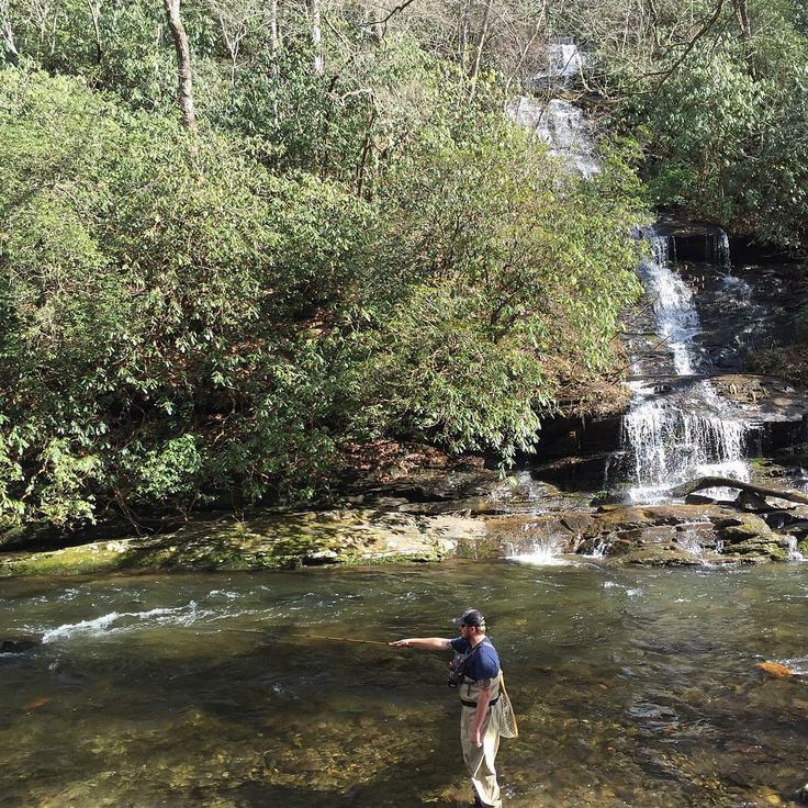 52 best fly fishing vacations images on pinterest rocky for Smoky mountain trout fishing