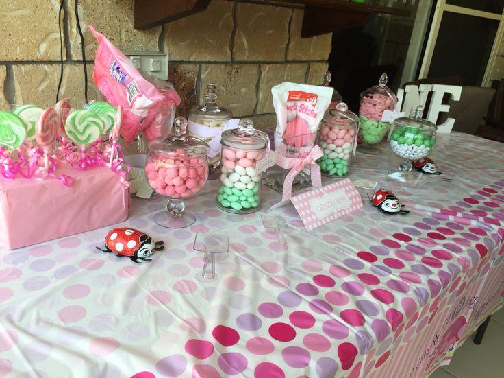 1st birthday party lady bug theme
