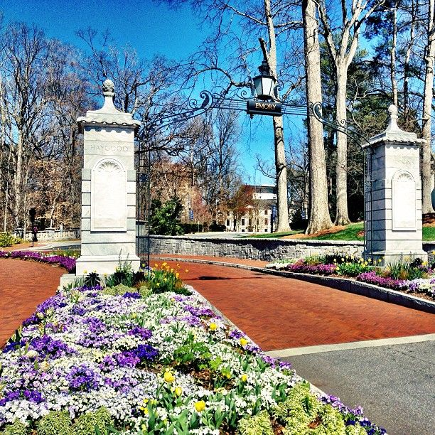 Bellwether Landscape Architects In Atlanta Ga: 17 Best Images About Emory On Pinterest