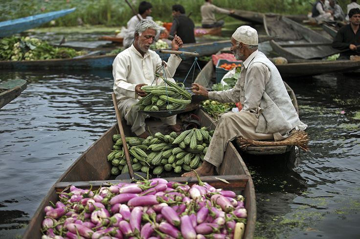 In Photos: Catch The Dawn At Kashmir's Famous Floating Market On Dal Lake
