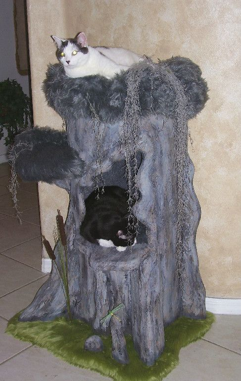 Cypress tree fantasy cat furniture that resembles real for Design your own cat tree