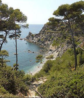 Six-Fours-les-Plages - Provence-Alpes-Côte d'Azur - France