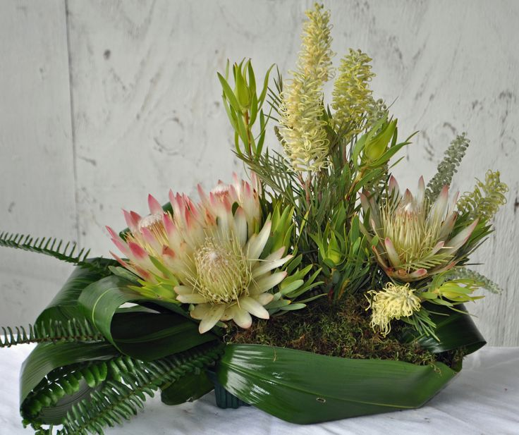 Protea Repens and Grevillea Flowers #CaGrown