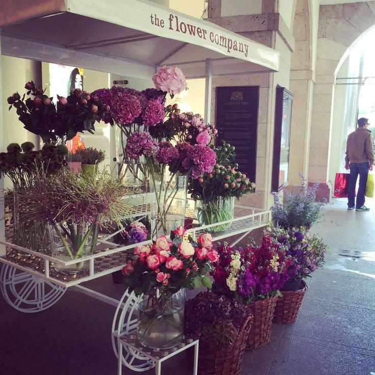 Flowers books