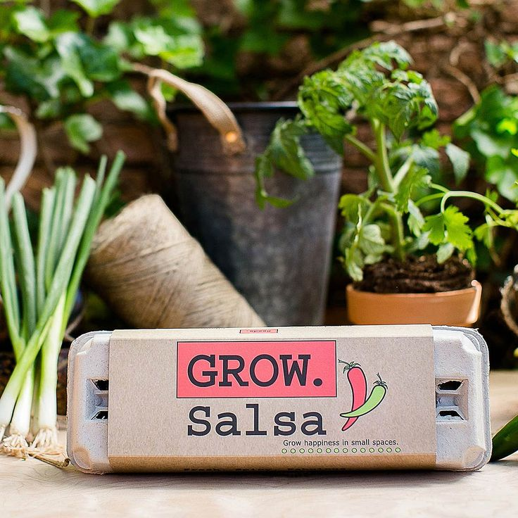 Enjoy the fruits of your labor with this simple grow kit, offering seeds for all the fixins for a flavorful salsa.