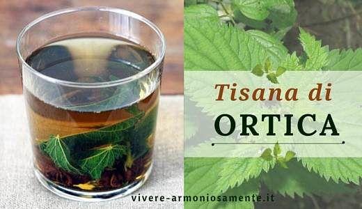 La tisana all'ortica è utile per l'anemia, è un antistaminico e antidolorifico…