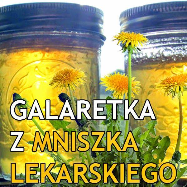 Galaretka z mniszka lekarskiego  http://dolinaziol.blogspot.com/2014/05/galaretka-z-mniszka-lekarskiego.html  Przedstawiamy prostą w przygotowaniu wzmacniającą galaretkę z mniszka lekarskiego. Ze względu na swój miodowy posmak idealnie pasuje do świeżej bułki z masłem. Smak wiosny.