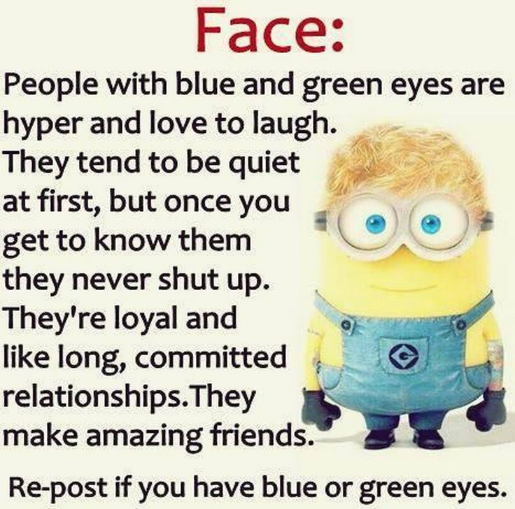 Funny Minions December captions (12:53:01 AM, Tuesday 15, December 2015 PST) –…