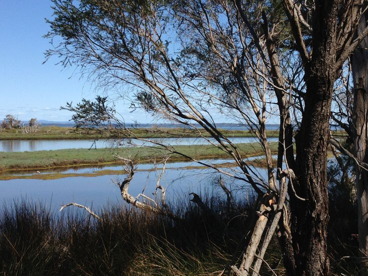 Erskine Nature Trail in Mandurah (Peel Region)   Trails WA