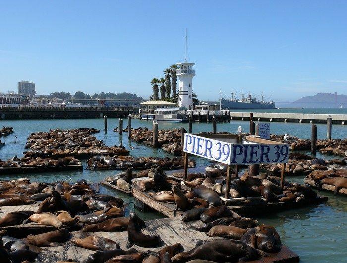 1000 Ideas About Pier 39 Restaurants On Pinterest