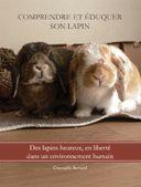 Tutoriel 1 : Construction d'une cabane/maison en carton pour lapin de compagnie-Marguerite et Cie.