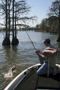 4 Top Spots For South Carolina Largemouth Bass Fishing