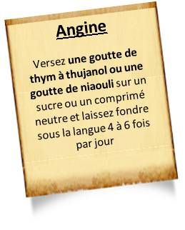 25 best ideas about les angines on pinterest angine for Aphte traitement maison