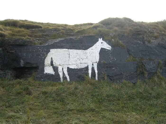 Cleadon Hills White Horse,Tyne and Wear, this small horse only 2 metres high is painted on a fock face with tar and limewash, it is first referenced to in 1887