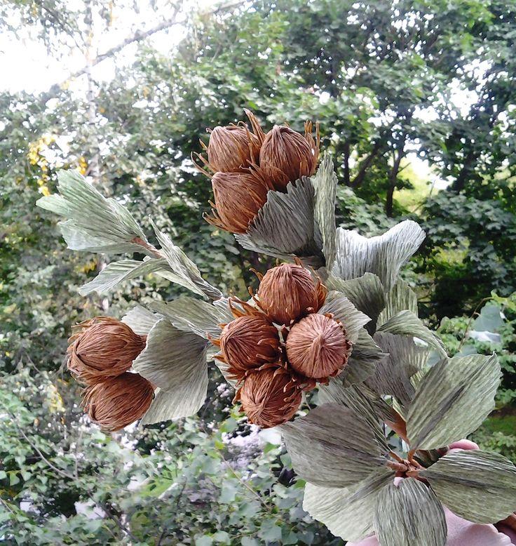 Hazelnut. Sweet design. Crepe paper flowers. Ветка фундука из гофры - 7 орехов с веткой из 3-х орехов