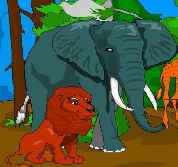 Hangi Hayvan Kaç Yıl Yaşar?