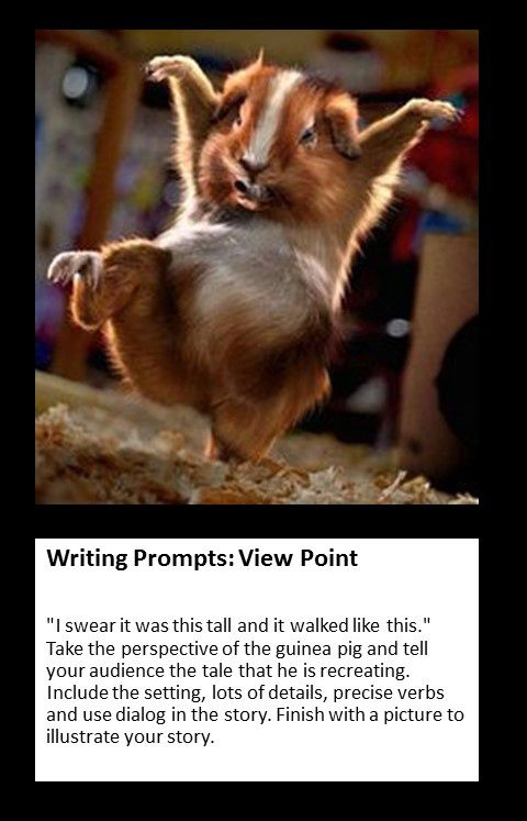 spooky writing prompts 4 steps to writing truly scary horror  a good way to begin writing a horror story is to determine what it is that terrifies people  next writing prompt: .